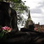 Ruïnes d'Ayutthaya, antiga capital de Tailàndia.