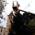 L'Ajuntament ha instal·lat un gran arbre de Nadal a la plaça de Sant Joan, que formarà part de l'enllumenat nadalenc d'aquestes festes. Estracted'un arbre sintètic adornat amb unes 2.500bombetes led,de […]