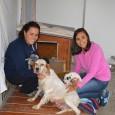 A la següent entrevista amb n'Elsa De Opazo, coordinadora de la canera municipal, podeu conèixer més sobre el seu funcionament.