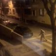 Aquest cap de setmana, L'empresa de neteja i Protecció Civil, han desinfectat els carrers del nostre poble, fumigant durantla matinada del dissabte. Segons ha informat l'ajuntament, demà dilluns podrien començar […]