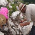La Campanya arqueològica d'enguany ha començat amb excavacions al Turó de s'Olivar, mentre que continuen les tasques a l'assentament de Mestre Ramon, aquestes tasques permetran saber, quina relació hi havia […]