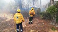 Avui migdia al voltant de les 13.30 hores, hi ha hagut un incendi al golf de la Costa dels pins, on hi han intervingut, Bombers de Mallorca, brigades de l'Ibanat, […]