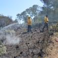Aquest migdia, damunt les 14.00 hores, s'ha iniciat un incendi a la zona de pinar situada davant el PAC de Son Servera. La ràpida intervenció de Protecció Civil i la […]
