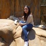 Lion Park, Johanesburg