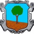 Convocatòria de sessió ordinària del ple de l'Ajuntament de Son Servera pel dia 21 de març de 2013, a les 13 hores PART RESOLUTIVA 2. Aprovació del limit de despesa […]
