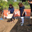 La Presidenta del govern, Francina Armengol, acompanyada del Conseller d'habitatge, Marc Pons i la Batlessa de Son Servera,NataliaTroya, hi han col·locat la primera pedra de la construcció d'un edifici de […]