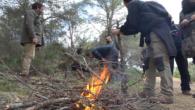 Amb sa Tronca s'ha donat el sus a les festes de Sant Antoni 2019. La tradicional recollida de llenya pels foguerons, ha duit a la comitiva participant a fer un […]