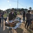 Dissabte 10 de gener, un grup de serverins es va arreplegar a la plaça per anar a fer llenya pels foguerons, acompanyats pels xeremiers des Puig de sa Font. L'anècdota […]