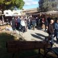 El sol i la bona temperatura varen ser els protagonistes del V Firó de la flor d'ametller, que aquest passat diumenge es va celebrar a les cases de Ca S'Hereu. […]