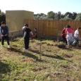 L'Ajuntament de Son Servera ha duit a terme, per mitjà de la Regidoria de Medi Ambient, una jornada de reforestació amb la participació dels alumnes de 6è del CEIP Na […]