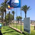 Un any més, les platges dels municipis de Son Servera i Sant LlorençdesCardassar han obtingut la distinció de la Bandera Blava, que atorga la Fundació per a l'Educació Ambiental (FEE) […]