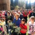 Amb la benedicció de rams a l'Església Nova ha començat la Setmana Santa serverina. Enguany, és la primera del rector Jaume Mercant, que a continuació ens explica els nous canvis […]