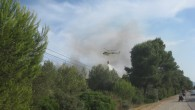 Avui capvespre s'ha produit un incendi al coll dels Vidriers, entre els municipis de Son Servera i Capdepera, que malgrat no era massa gros, ha aixecat les alertes per les...