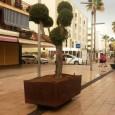 L'Ajuntament de Son Servera, des de la seva regidoria de Medi Ambient i en col·laboració amb l'empresa concessionària del servei de neteja viària i manteniment de zones verdes i arbrat […]