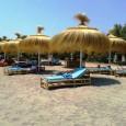 Les regidories de Turisme de Son Servera i Sant Llorenç tornen a posar en marxa enguany les activitats lúdiques i esportives a les platges del municipi, després de l'èxit que […]