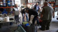 L'Ajuntament ha iniciat la campanya de recollida d'oliva perquè els petits productors locals puguin extreure el seu oli. Aquest any es realitzessin dos lliuraments, una es va fer dilluns passat […]