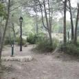 La portaveu de Més per Son Servera, en declaracions a Cala Millor 7 i Tv Serverina, ha criticat l'estat de abandonament que pateix la zona de l'espai eco turístic, situada […]