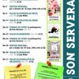 Cursosi tallerss organitzats pel Centre d'Informació Jove (CIJ) de Son Servera. OCTUBRE Taller de pompons de paper Dimecres 2 a les 16.00 h, al CIJ. Sortida paintball Dissabte dia 5. […]