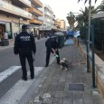 L'Ajuntament de Son Servera ha iniciat una campanya de control de cans adreçada a promoure la identificació dels animals de l'espècie canina mitjançant un xip, en funció de la normativa […]